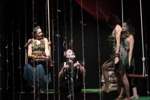 Teatro de Adultos (7)